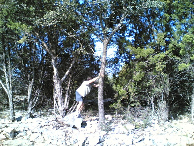 Adam against a tree