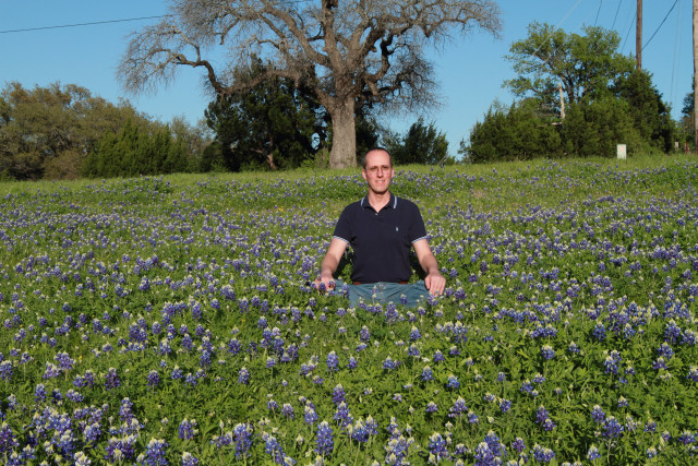 Quintessential Bluebonnet Picture