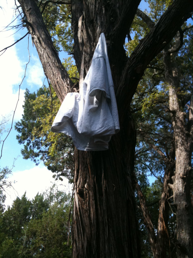 shirt hung on a tree